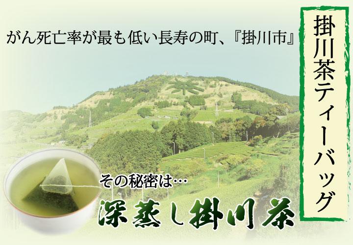 掛川茶ティーバッグ がん死亡率が最も低い長寿の町、掛川市 その秘密は…深蒸し掛川茶
